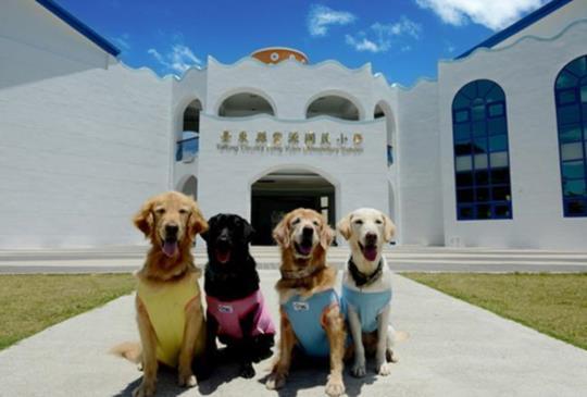 【跟寵物去旅行】一起來搜集全台特色小學吧!