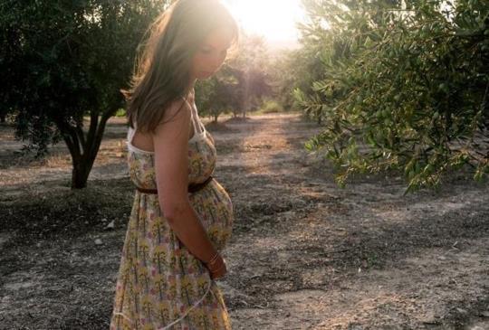 新手孕媽咪別慌張,「4種」孕期保健食品聰明吃!