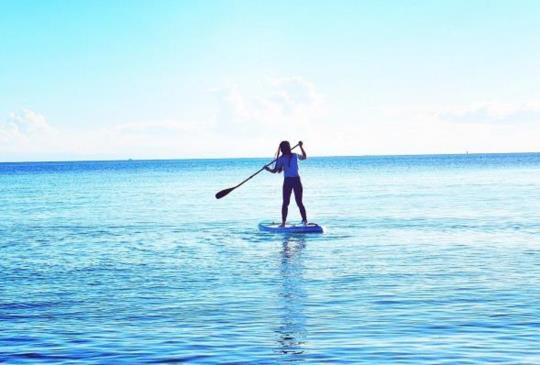【澳洲.摩頓島】世界第三大沙島-餵野生海豚、滑沙精采體驗