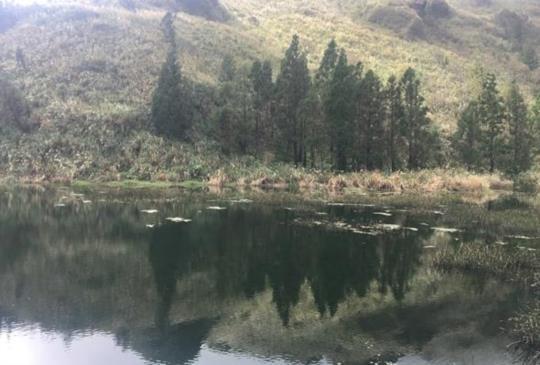 【台北慢旅】在雲霧與管芒花環抱下,讓身影倒映在唯美的夢幻湖中