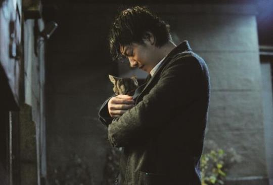 【《如果這世界貓消失了》(下)從這一刻起,與自己和所有的遺憾和解吧!】