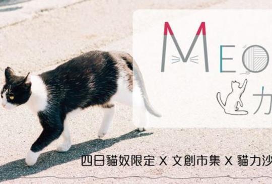 【貓奴看過來】就是本週!寵物展推出「Meow力生活節」文創/攝影/論壇全都是貓咪的天下