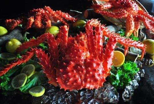 【一起來大啖高級食材吧!嚴選帝王蟹、龍蝦吃到飽餐廳】~吃到飽特搜