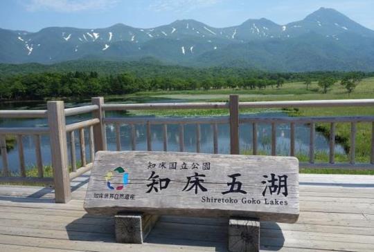 【北海道.知床半島】絕美日本秘境,棕熊的棲息地「知床五湖」