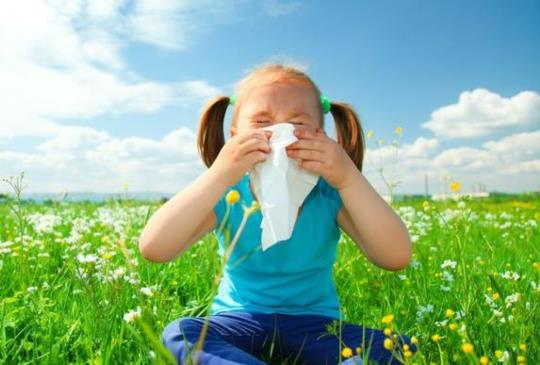 【春天過敏大發作 吃益生菌改善有用嗎?】