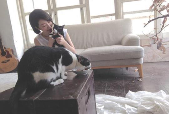 從怕貓到愛貓成癡  路嘉欣:「我是貓奴,我愛貓」
