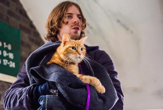 【《遇見街貓BOB》付出犧牲的扭轉】