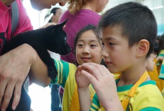 【愛護動物從小開始】小小萌娃化身動保小小兵 體驗毛寶貝生命教育