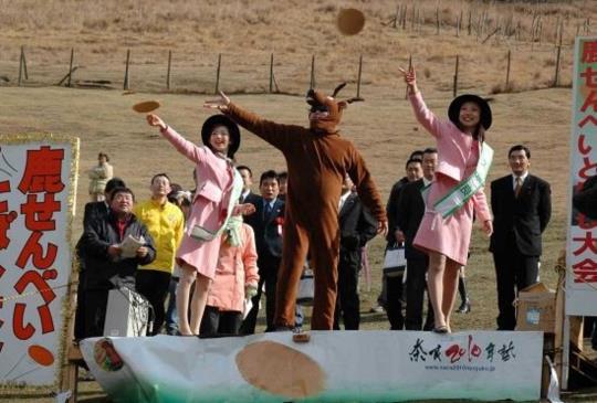 【奈良】春日樂趣:體驗限定版的在地文化慶典