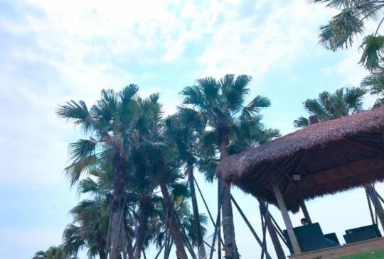 【斗六】南洋風情台版小BALI  遊峇里島不是夢