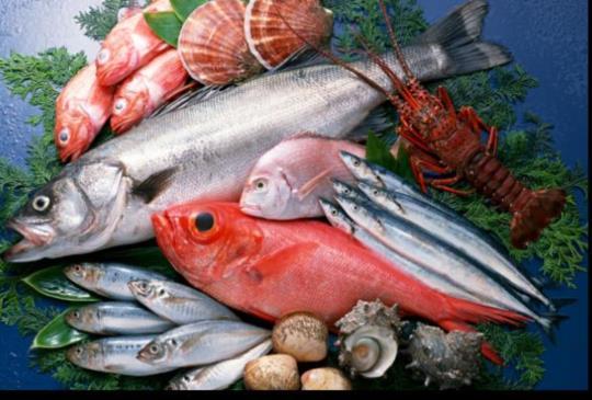 為了50年後有魚可吃,這七種海鮮要注意!