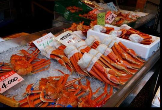 【日本】秋遊城崎溫泉泡7種湯,大啖松葉蟹