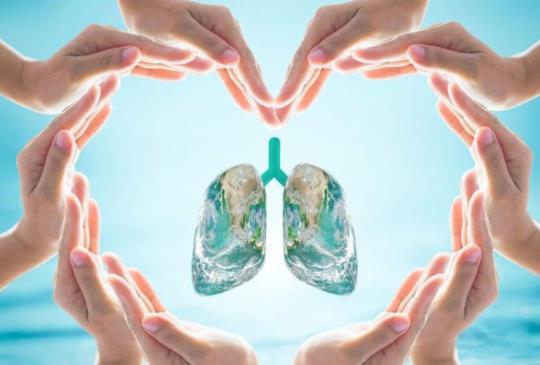【攝取這兩種營養素 可減少肺癌風險】