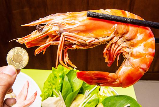 巨無霸大海蝦入侵平價小火鍋!【五鮮級平價鍋物】(海鮮篇)