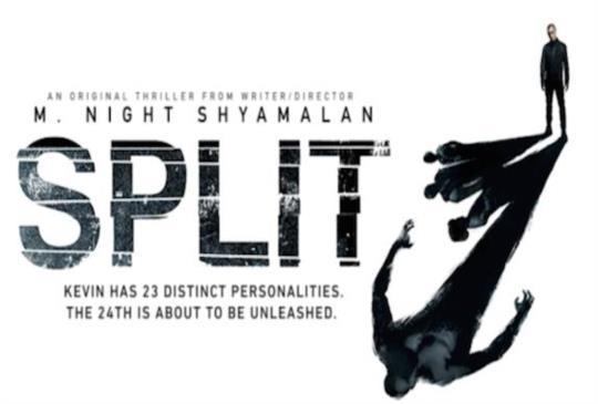 【《分裂-SPLIT》受過傷的靈魂,總帶著碎裂的心,傷己傷人】