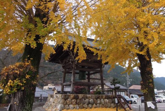 【名水與舞姿的魅力古城】日本岐阜小京都-郡上八幡散策