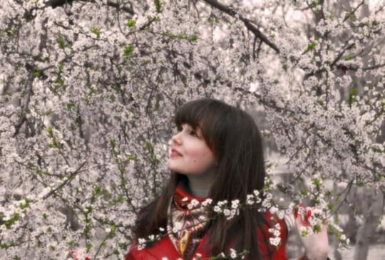 【賞花最前線】台日韓賞花不求人! 今年春天就讓櫻浪粉瞎你的眼