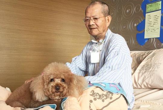 將希望與祝福帶入安寧病房「有你真好」治療犬報導(一)