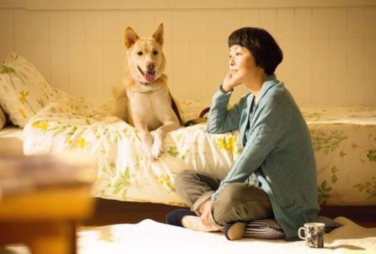 狗狗的幸福,從遇到你的那一天開始,小林聰美真心推薦..