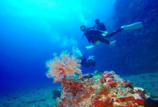 【台灣 - 綠島】台灣海島旅遊怎麼能錯過海陸交織的自然人文綠島小夜曲