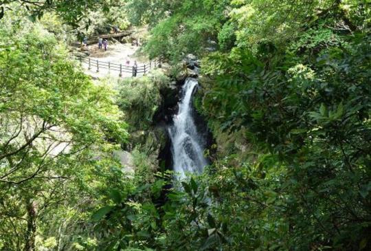 【三峽】爬郊山、觀瀑、賞楓:滿月圓國家森林遊樂區