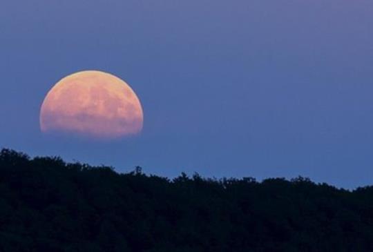 【國外月亮比較圓?】CCR的美麗與哀愁