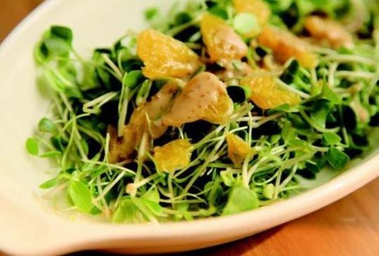 【能量湯羹暖人心:櫛瓜番茄雞蛋沙拉 X 和風沙拉汁】