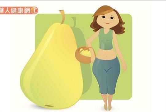 肥胖是「濕氣」太重惹禍?周宗翰:陳皮、茯苓、山楂3大祛濕化痰減重明星