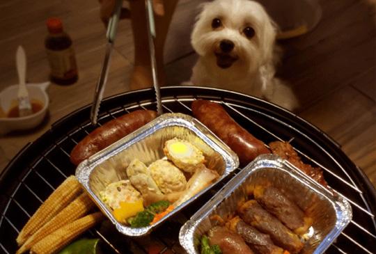 中秋烤肉萬家香,毛孩也有自己的烤肉趴