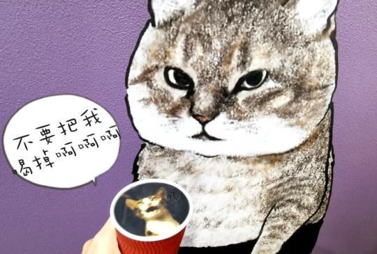日本福貓展,貓奴還不速速來參拜