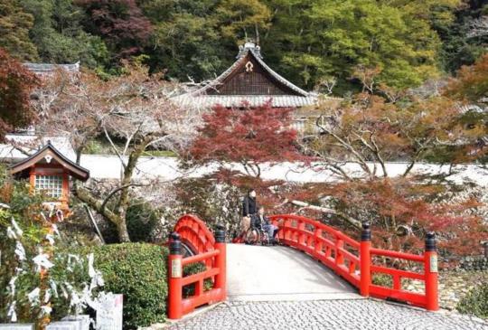 大阪另一種玩法:小資女高貴卻不貴的溫泉鄉之旅