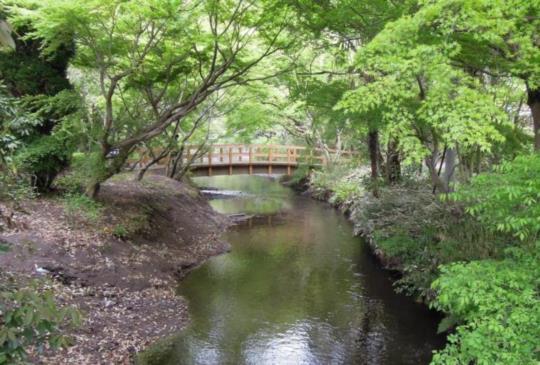 【日本】漫遊古典溫泉小鎮:徜徉湯布院的優雅風情
