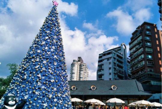 【年末最浪漫打卡景點!北部必拍6棵「夢幻聖誕樹」點點名 約會告白都靠這棵樹啦!】