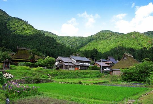 【京都】美山:深入山林秘境,尋找茅草屋頂的故鄉