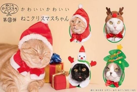 【扭蛋旋風侵台】聖誕節帽子系列出來啦!趕快戴出喵星人專屬聖誕裝