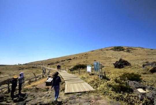 征服韓國第一高峰【濟州島】漢拏山不鐵腿健行路線