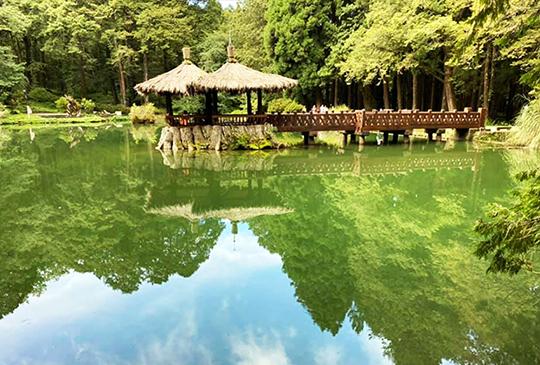 【全台12座森林遊樂區免費入園】活氧、芬多精、負離子等著你來感受!附上小編精選暑假活動!
