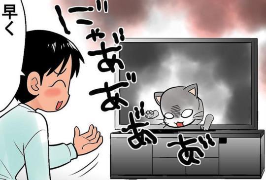 【貓咪狂想曲】當討厭的○○變成貓