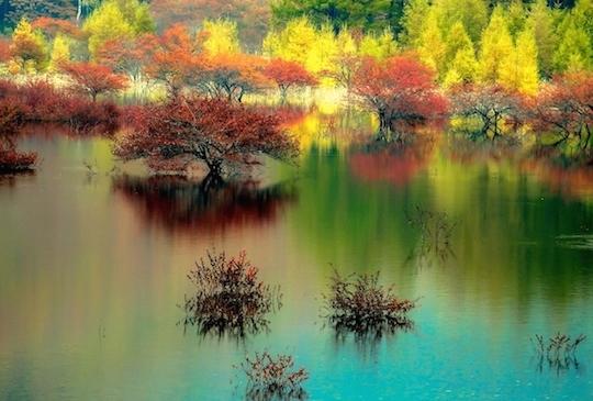 日本楓景特集:探秘日光12大夢幻紅葉景點