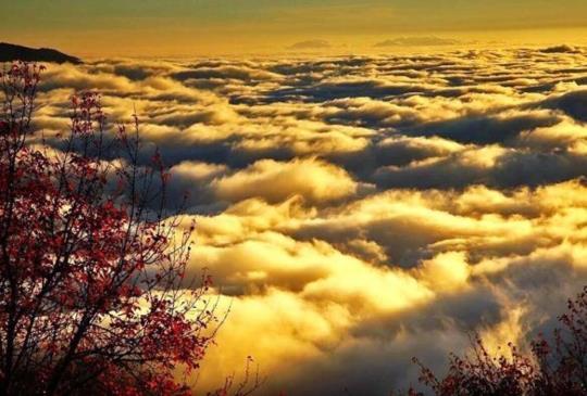 一起漫步雲端!全台8大絕美雲海觀賞地