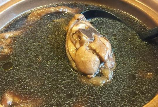 給毛小孩來一碗:冬季補血養生的何首烏藥膳雞湯