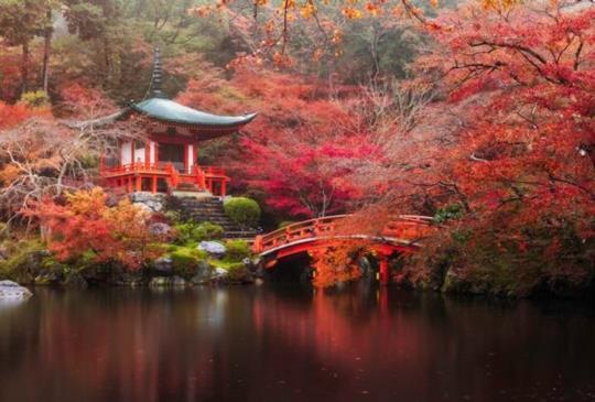 【你拜拜的方式正確嗎?圖解日本神社的正確參拜方式】