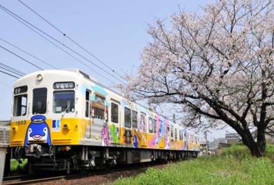 【香川高松】從不要到需要,絕境重生的海豚電車「琴電」