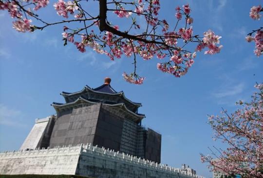 【鑼鼓連天慶豐年 熱鬧滾滾好踏春】假日「大台北」鐵路、捷運可到達的景點
