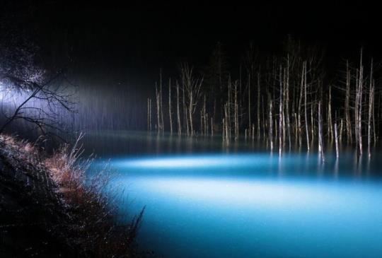 【青池‧一樣的藍湖水,不一樣的景致】