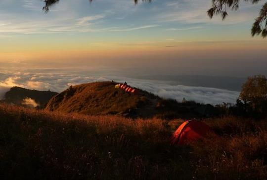 【體驗在森林裡露宿的感受:秘境露營區!】