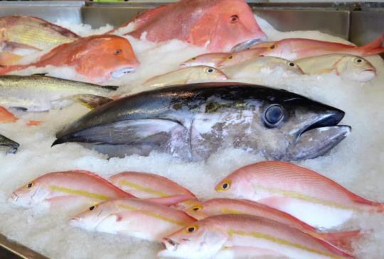 如何做個專業的海鮮消費者
