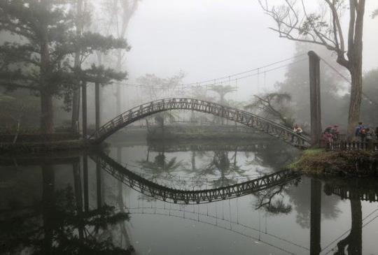 【南投】來去「溪頭」森呼吸,感受大自然之美
