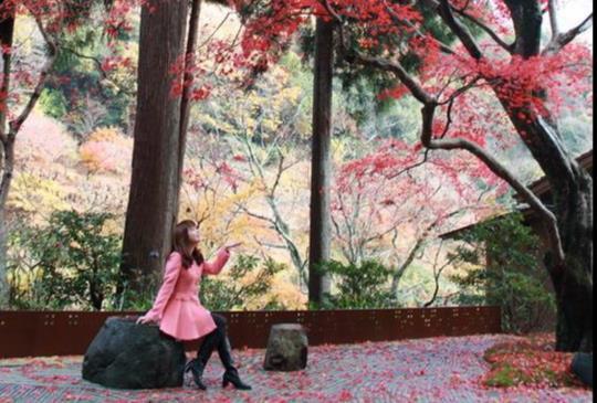 女王的京都賞楓之旅~終於住到夢想中的旅館星野Hoshinoya Kyoto星のや京都