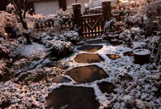 低溫急速凍台!北台灣鄉間小鎮輕鬆追雪趣